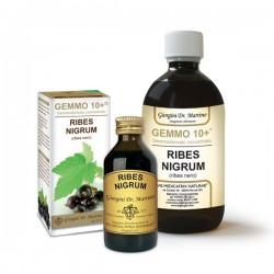 Dr. Giorgini Ribes Nigrum Ribes nero 100 ml